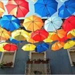 umbrela3