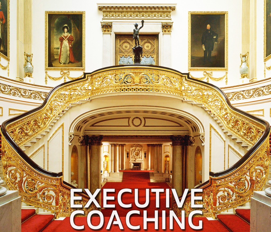 executive-coaching_fixed2 (1)